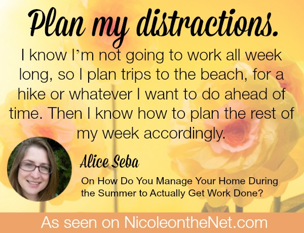 How to Manage Your Home During the Summer To Actually Get Work Done - Alice -052814