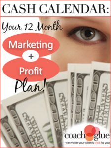 planner-cash-calendar-your-12-month-340x453-3